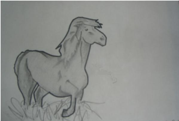 un cheval bannal avec une touche de savoir faire ^^